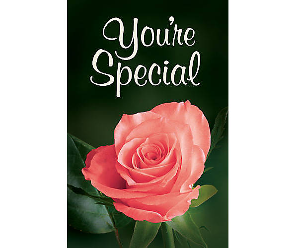 your special rose